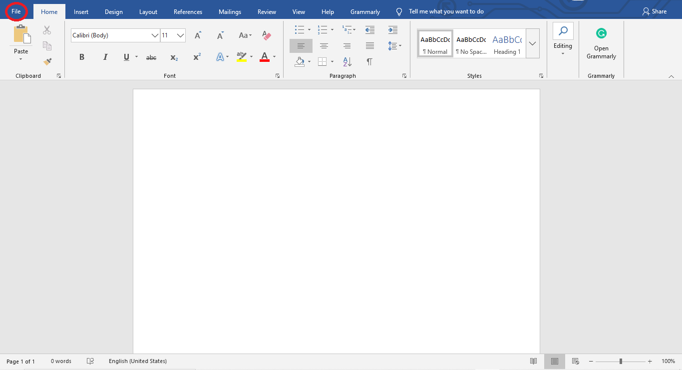 Word Document interface